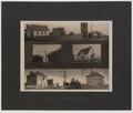 Views of Rathwell, Manitoba (HS85-10-20401) original.tif