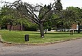 Village Green and Sign at Bendish - geograph.org.uk - 185629.jpg