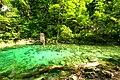 Vintgar Gorge (35811924555).jpg