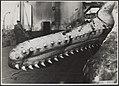 Visserij Walvisvangst, Bestanddeelnr 036-0153.jpg
