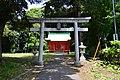 Wakanomiya-sengen-jinja torii.JPG