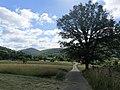 Wanderweg zur Wegelnburg 03.jpg