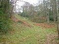 Warboro Plantation - geograph.org.uk - 155698.jpg