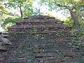 Warszawski Ogród Botaniczny - Ruiny Świątyni Opaczności - 15.jpg