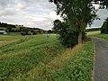 Wasserschutzgebiet bei Altertheim im Altbachtal (später Welzbach) 5.jpg