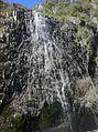 Waterfall creek falls, Bridabella national park - panoramio.jpg