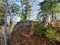 Weiler, Alt-Montfort 1.jpg