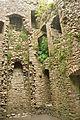 Weobley Castle (5473).jpg