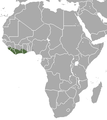 West African Pygmy Shrew area.png