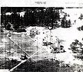 Whitefish Point July, 21 1947.jpg