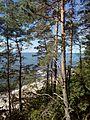 Widok na plażę w Wolińskim Parku Narodowym.jpg