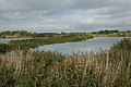 Willington Gravel Pits - geograph.org.uk - 252261.jpg