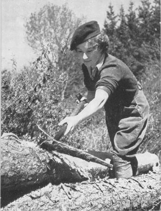 Forestry in the United Kingdom - A member of the Women's Timber Corps in the Second World War