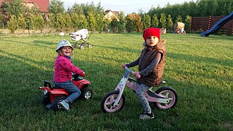 Balance bicycle for young children Wooden bicycle for young child.jpg