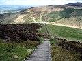 Wooden steps on Foel Fenlli - geograph.org.uk - 1249786.jpg
