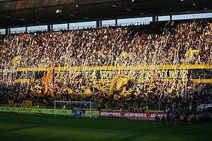 BSC Young Boys - BSC Young Boys supporters