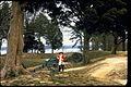 Yorktown Battlefield (Part of Colonial National Historical Park) YORK0027.jpg