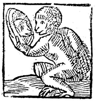 Heidelberg Bridge Monkey - Drawing of the Heidelberg Bridge Monkey from the year 1620