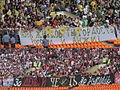 Zhirkov banners.jpg