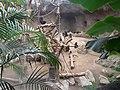 Zoo 093.jpg