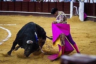 Spanish-style bullfighting