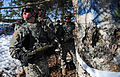 """""""Timber!"""" Paratroopers cut down trees with explosives 130321-F-LX370-803.jpg"""