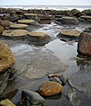 'Mermaid Tables', Ravenscar Beach - geograph.org.uk - 1474088.jpg