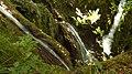 Водопади , Бачковски манастир , местност Клувията.JPG