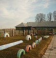 Детский сад в посёлке Северная Кузнечиха.jpg
