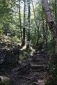 Дорога к пещере.jpg