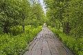Дорога на Голгофу MG 1470.jpg