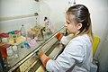 Дослідження в лабораторії молекулярної та клітинної патобіології.jpg