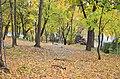 Кам'янець-Подільський парк восени. Фото 2.jpg