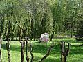 Камень akmens - panoramio (1).jpg