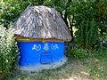 Курник з села Цибулівка-1.JPG