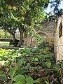 בית האבן בחצר בית פישר 7.10.2013.JPG