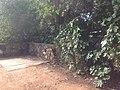 לאורך כביש 5 - מיכל מיכאלי מצלמת (8514644283).jpg