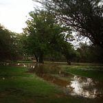 صورة أحد المناظر الطبيعية بعد سقوط الامطار في ابريل 2013 في احد اجزاء منطقة سور البلوش 2014-05-10 22-40.jpg