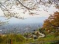 愛宕山から甲府盆地を眺める - panoramio.jpg
