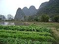 果长村外的水田 - panoramio.jpg