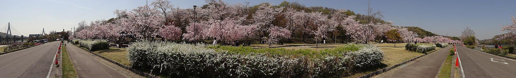 水源公園 (愛知県豊田市水源町) - panoramio (10).jpg