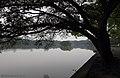 温州 江心屿 Jiang Xin Yu, Wenzhou - panoramio.jpg