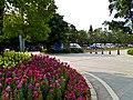 雀山公园 - panoramio (2).jpg
