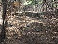 발-유성 사이묘 - panoramio.jpg