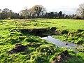 -2008-11-27 Cattle pasture, Tunstead, Norfolk.jpg