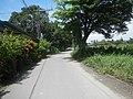 0171jfCutcut Pulong Gubat Tiaong Guiguinto Bulacan Roadsfvf 16.jpg