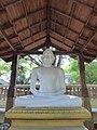 027 Samadhi Buddha (20451017931).jpg