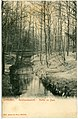 03367-Dresden-1903-Im Park des Garnisonslazarettes-Brück & Sohn Kunstverlag.jpg