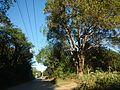 0350jfArterial Roads Talacsan Maronquillo Pulo San Rafael Bulacanfvf 04.jpg