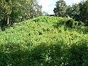 Mound 2 at Lake Jackson Mounds Archaeological State Park